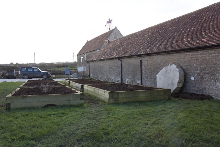 most of the kitchen garden