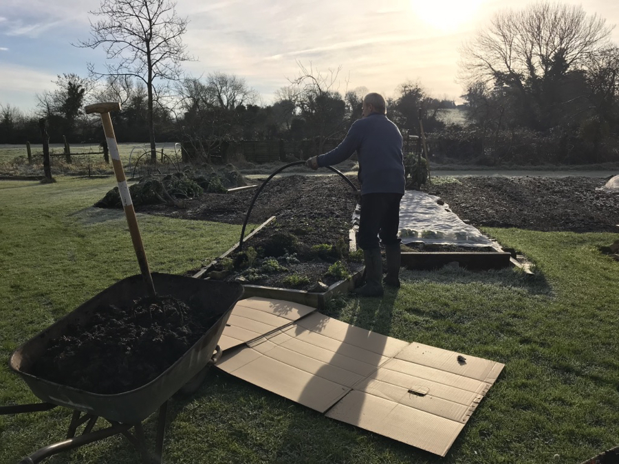 Making a no dig bed on frozen grassy ground