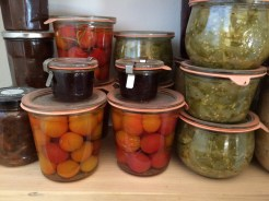 Ideas for preserving the harvest