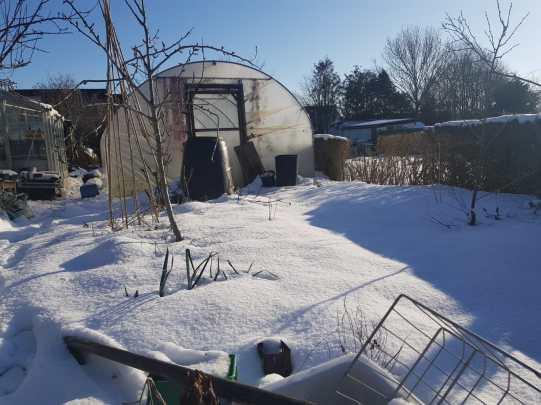 My back garden by Ruairi