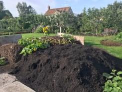 growing veg on the heaps