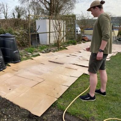 Ruairi watering the cardboard