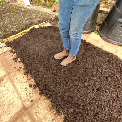 firm the compost gently