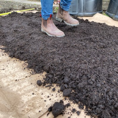 firming the compost with feet