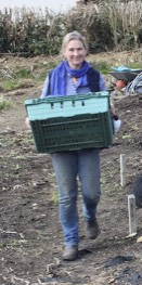 At the allotments