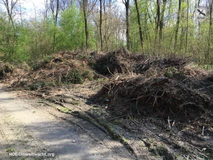 illegale Ablagerung im Landschaftsschutzgebiet Donau-March-Thaya-Auen in Hainburg   Foto: NOE-Umweltwacht.org