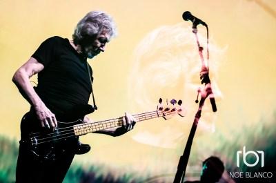 Roger Waters Noé Blanco-22