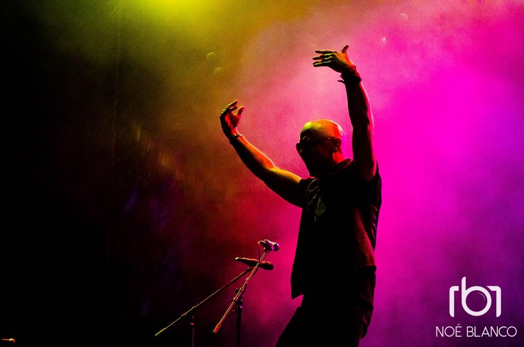 Live / Roxy Fest