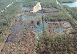 Swamp before Jazzland Rebuild