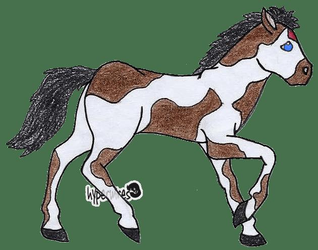 Duchess the Foal