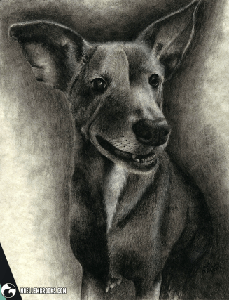 dog, dogs, puppy, puppies, sitting, smiling, happy, full-body, fully body, short haired, short-haired, charcoal, charcoals, charcoal pencil, charcoal pencils, realism, realistic, gradient, animal, animals, pet, pets, cute, achromatic, black and white, black, white, grey, gray, cream, creme, beige, noelle, noelle brooks, noellebrooks, noelle m brooks, noellembrooks, art, series, drawing, drawings, illustration, illustrations, portrait, portraits, picture, pictures,