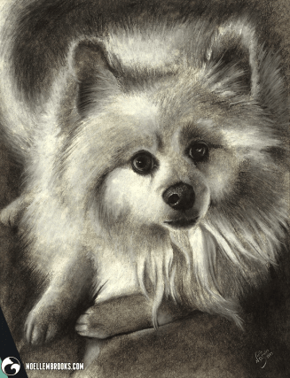 dog, dogs, puppy, puppies, long haired, long-haired, lying down, face, charcoal, charcoals, charcoal pencil, charcoal pencils, realism, realistic, gradient, animal, animals, pet, pets, cute, achromatic, black and white, black, white, grey, gray, cream, creme, beige, noelle, noelle brooks, noellebrooks, noelle m brooks, noellembrooks, art, series, drawing, drawings, illustration, illustrations, portrait, portraits, picture, pictures,