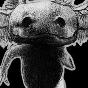 axolotl, axolotls, amphibian, amphibians, cute, ink, inks, pen, pens, ballpoint pen, ballpoint pens, realism, realistic, animal, animals, wildlife, nature, achromatic, black and white, black, white, grey, gray, noelle, noelle brooks, noellebrooks, noelle m brooks, noellembrooks, art, series, drawing, drawings, picture, pictures, illustration, illustrations, portrait, portraits