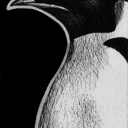 penguin, emperor penguin, profile, side, hedgehog, front, frontal, face, standing, cute, ink, inks, pen, pens, ballpoint pen, ballpoint pens, realism, realistic, animal, animals, wildlife, nature, achromatic, black and white, black, white, grey, gray, noelle, noelle brooks, noellebrooks, noelle m brooks, noellembrooks, art, series, drawing, drawings, picture, pictures, illustration, illustrations, portrait, portraits