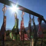 aprons in the sun