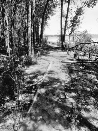 Lake trail at Chatfield State Park: Photo by Noelle