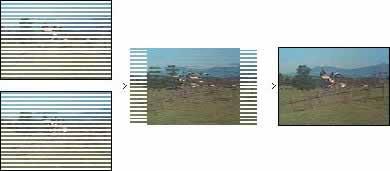 Caratteristiche esclusive del DVD Video