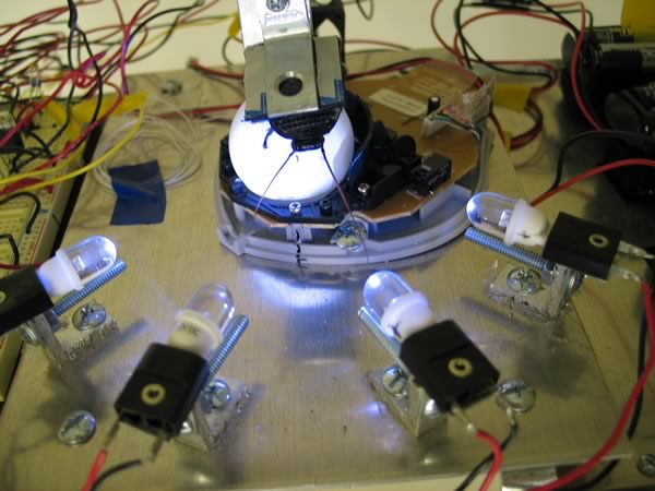 Cockroach Controlled Mobile Robot, Garnet Hertz (Canada) - winner