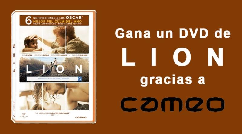 CONCURSO LION