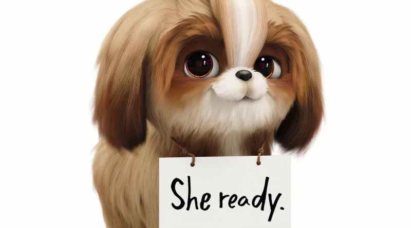 'Mascotas 2': Nuevo tráiler centrado en Daisy