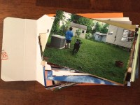 photos to organize    noexcusescrapbooking.com