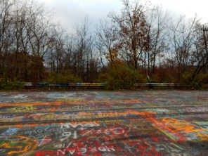Event the guard rails and trees are covered in graffiti