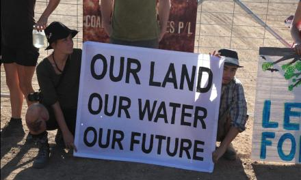 Can Leard Forest be saved? @georgefwoods reports on #leardblockade