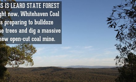 One #leardblockade rule for Whitehaven, another for Jono Moylan: @larissawaters decries double standards