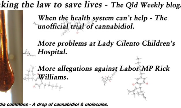 Breaking the law to save lives – The #QldWeekly Blogazine: @Qldaah #qldpol