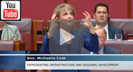 A very animated Michaelia Cash answers questions from The Greens on the WestConnex project in 2015.