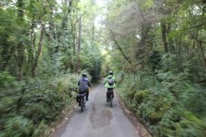 Riding the valleys in Dartmoor