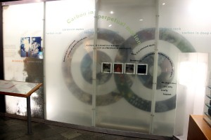 The Carbon cycle exhibit