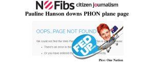 Pauline Hanson takes down PHON plane page