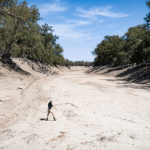Kate McBride walking in the dry bed of the Darling River. Photo: Tony Hill