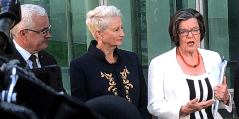 How the pop-up @DrKerrynPhelps campaign for Wentworth came together: a @margokingston1 dinner party debrief