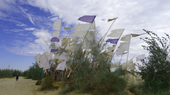 Flags and scrub atop a sand dune