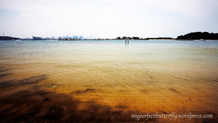img 87821 Islands Of The Island Of Singapore Jamie Chan