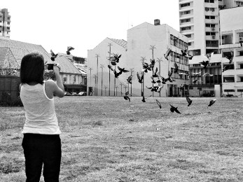 Strrets, joo chiat, Singapore, birds