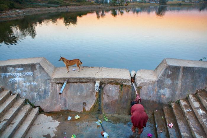 Kathmandu, Dog, Water, Jamie Chan, No Foreign Lands, Travel Blogger