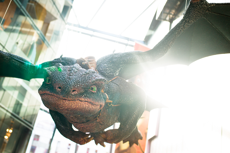 How to train your dragon, night fury, toothless, dreamworks, exhibition, Melbourne, ACMI, Jamie Chan, No Foreign Lands, Leica