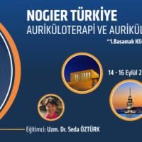 Auriküloterapi ( Fransız Kulak Akupunkturu ) ve Aurikülo Tıbbı Seminerleri 2018 - 2019 Yeni Eğitim Dönemimiz Başlıyor...