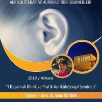 04-06 Ekim 2019 Ankara 1. Modül Klinik ve Pratik Auriküloterapi, Fransız Kulak Akupunkturu Semineri