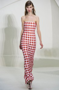 Dior SS 2014 - Haute Couture