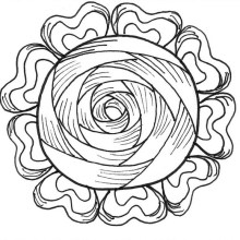 cabbage_rose_icon