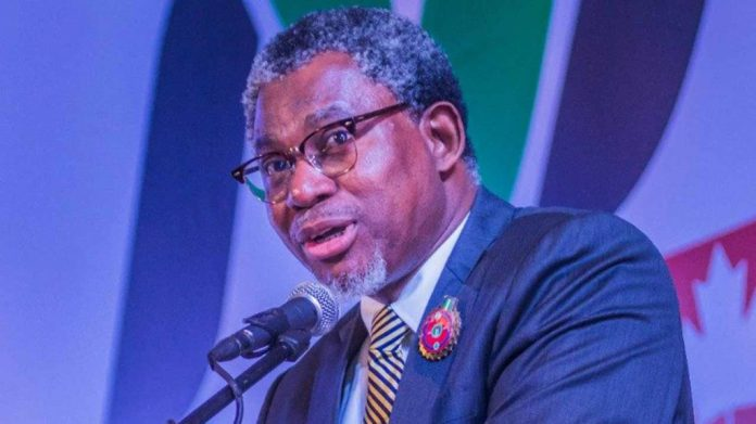 Minister laments neglect of mining sector