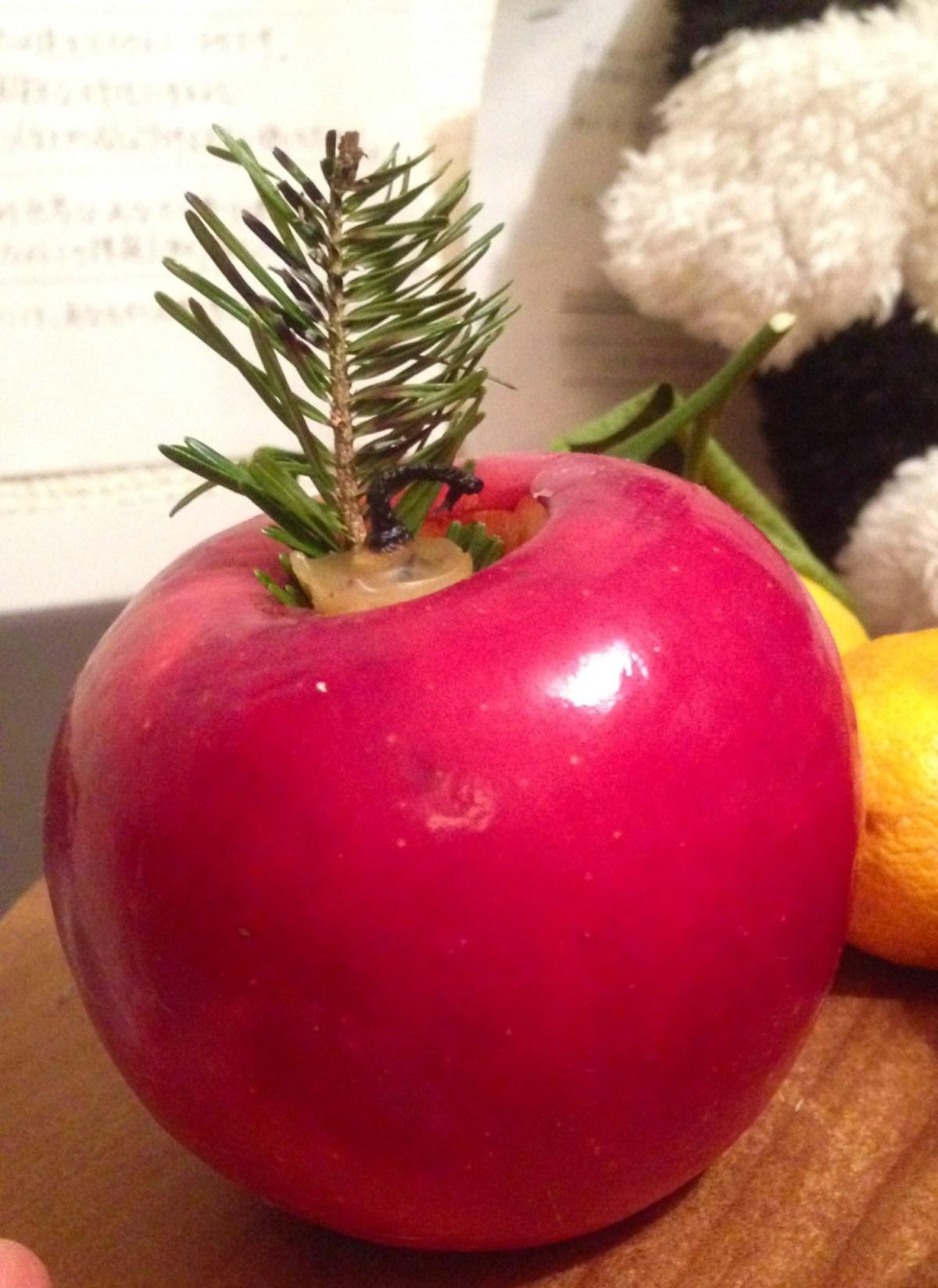 セルジオ・レオーネ作品、肉について、甲府-国立での稽古、りんごろうそく