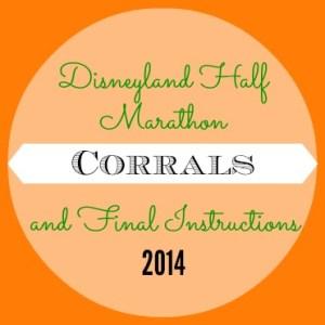 Disneyland Half and Dumbo Double Dare Corrals 2014