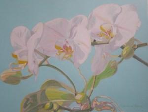 White Orchids Aqua 17 x 21