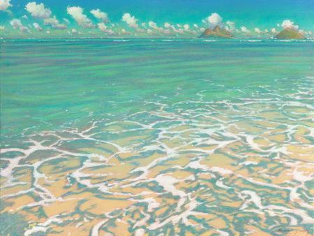 Ai Lowrey Kailua Shallows Sample