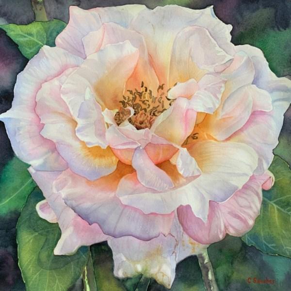Colleen Sanchez original watercolor A Rose in Hawaii 18 x 18